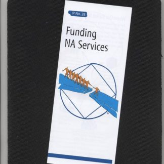 IP # 28 Funding NA Services