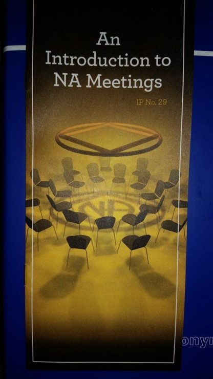 An Intro to NA Meetings H&I Edition