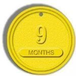 NA Recovery Chips Yellow 9 Month Chip
