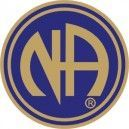 NA Logo Lapel Pin Blue & Gold