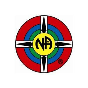 NA Group Logo Lapel Pin